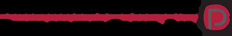 Professional Performance Development Group, Inc. Retina Logo